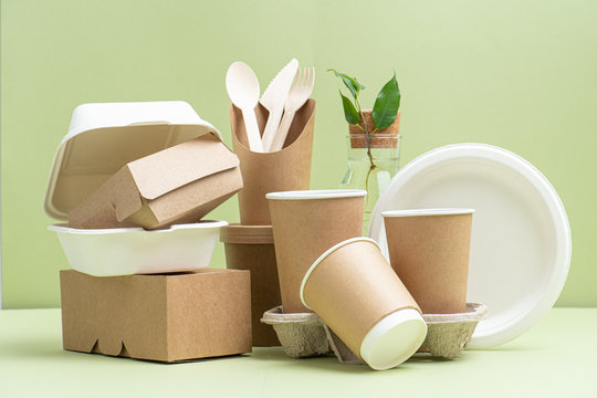 Eco-friendly disposable containers for food and drinks over green