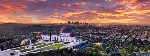 Wall Mural - Los Angeles skyline from Griffith park
