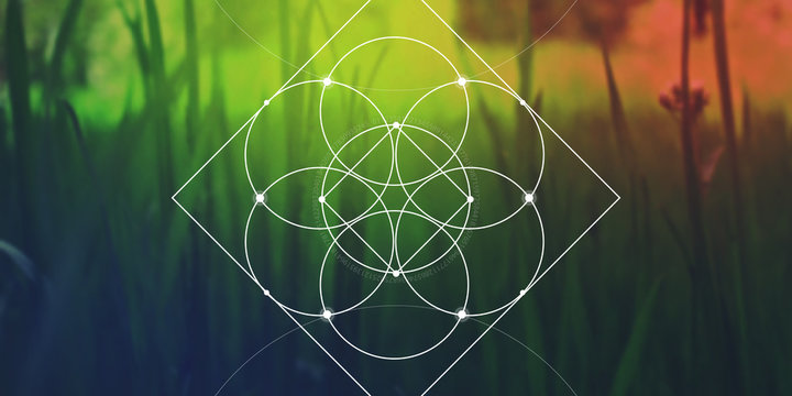 Sacred geometry web banner. Math, nature, and spirituality in nature. The formula of nature.