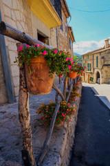 Fototapeta Kwiaty w doniczkach przy ulicy obraz