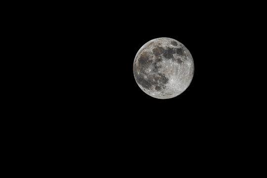 Super moon pink moon against  dark sky