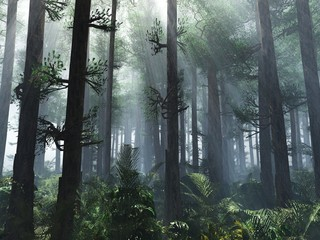 Fotobehang Bleke violet Trees in the fog. The smoke in the forest in the morning. A misty morning among the trees. 3D rendering