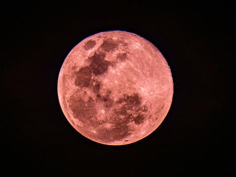 Super pink moon on 8 Apr 2020 in Rose gold color