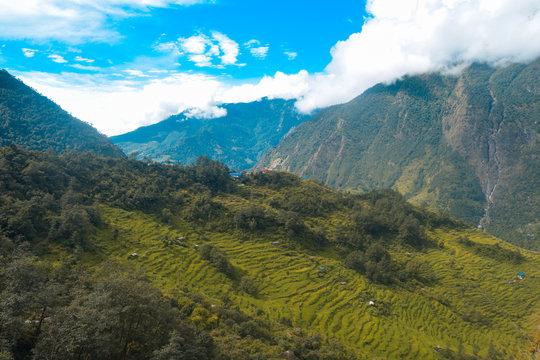 Terrace Farming Landscape as seen from Simi Gaun, Nepal