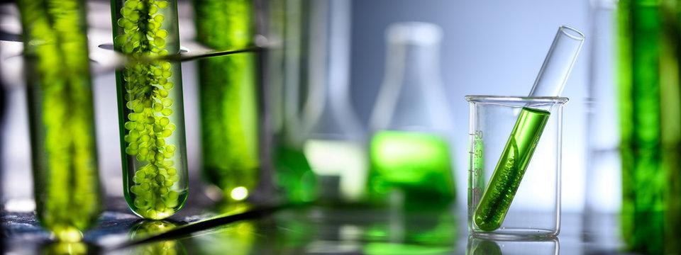 Photobioreactor in medical science laboratory algae fuel biofuel industry, nature algal research, energy and healthcare treatment biotechnology, coronavirus covid-19 vaccine, eco living sustainable