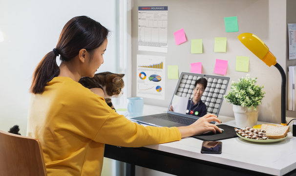Young Asian woman holding cat working from home due to coronavirus covid-19, making online video call with colleague, Work from home concept