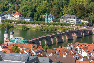 Fototapete - Old Bridge in Heidelberg, Germany