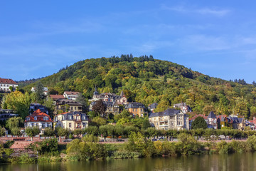Fototapete - Village on Neckar river, Germany