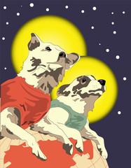 Fototapeta vector illustration, retro postcard with Belka and Strelka in space, dogs in space obraz