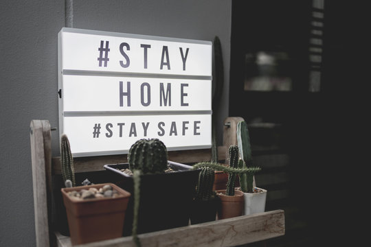Lightbox sign with text hashtag #STAY HOME and #STAY SAFE with cactus pot home decor. COVID-19. Stay home save concept.