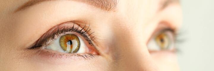 Fond de hotte en verre imprimé Iris Female orange green coloured amazing wide opened eyes