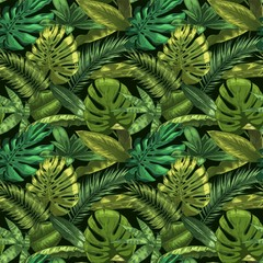 Wall Mural - Green tropical leaves seamless pattern. Color monstera and tropic palm leafs, botanical garden floral vector illustration. Seamless exotic tropic, jungle green decoration