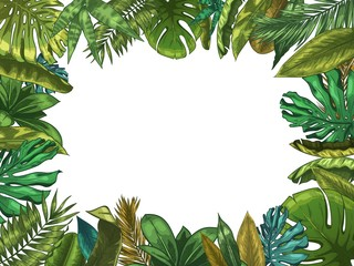 Wall Mural - Green tropical leaves frame. Nature leaf border, summer vacation and jungle plants. Monstera and exotic palm tree leafs vector illustration. Palm exotic leaf, tropical floral copyspace