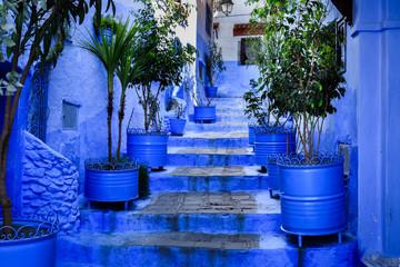 Altstadt von Chefchaouen mit Treppen und Blumentöpfe,  Marokko, El Aaiun, Fotomurales