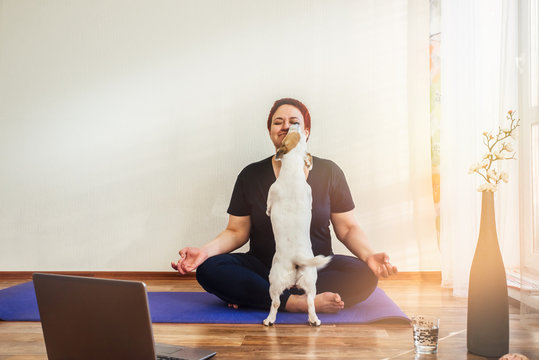 Adult girl practice online yoga lesson at home during quarantine isolation during the coronavirus pandemic. Dog licks the girl s face