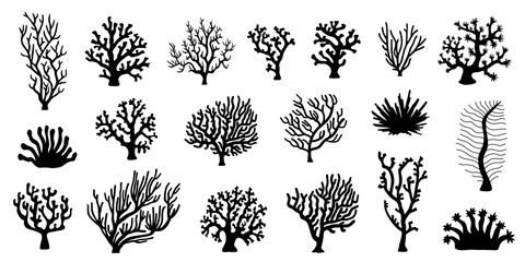 various coral silhouette