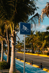 cycle lane sign in the streets of Mexico