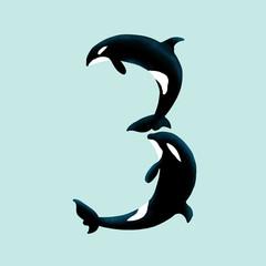 Orca - Three