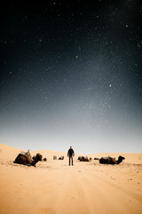 Tourist surrounded by camels at starry night in the desert of Morocco