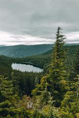 Lake near Mount Hood, Oregon