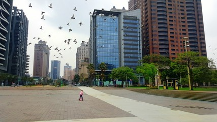 Fototapeta Flock Of Birds Flying Over Girl Unicycling On Street In City