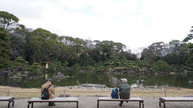 Adultos mayores sentados en bancos de un jardín japonés respetando la distancia social