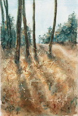 pine forest lit by the sun, watercolor landscape
