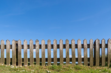 Wooden picket fence with grass, daisies and blue summer sky behind. Unpainted, natural wood.