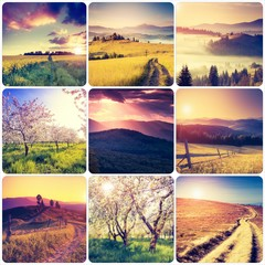 Wall Mural - Creative collage of summer landscape with square images.