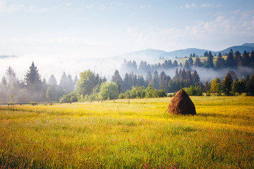 Fotomurales - Exotic alpine highlands in sunny day. Location Carpathian mountains, Ukraine, Europe.