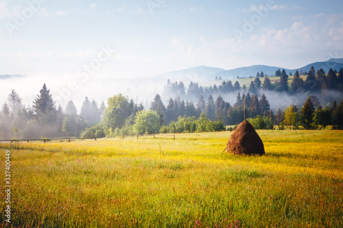 Wall mural Exotic alpine highlands in sunny day. Location Carpathian mountains, Ukraine, Europe.