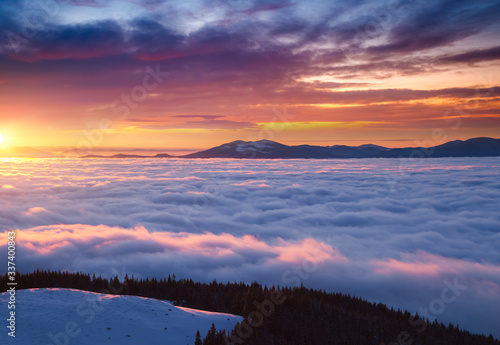 Wall mural Fantastic air view of the valley covered with dense fog. Location Carpathian mountain, Ukraine, Europe.
