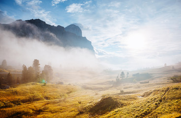 Wall Mural - Misty view of the Mt. Tofana di Rozes from Falzarego pass. Dolomite alps, Italy, Europe.