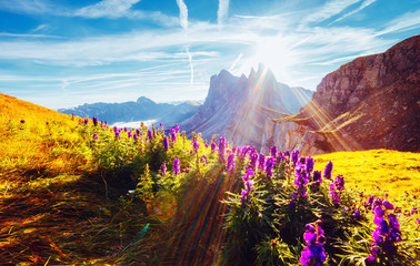 壁紙(ウォールミューラル) - Morning view of the alpine valley in sunlight. Location place Puez-Geisler National Park, Seceda peak, Italy.