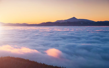 壁紙(ウォールミューラル) - Incredible air view of the valley with dense fog. Location Carpathian mountain, Ukraine, Europe.