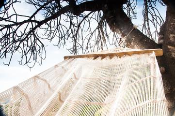 Fototapeta zdjęcie przedstawiające relaks w hamaku w słońcu wiosną obraz