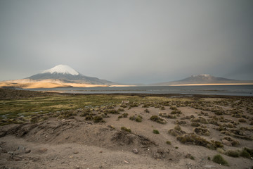 Volcanoes towering above the laguna in Andes