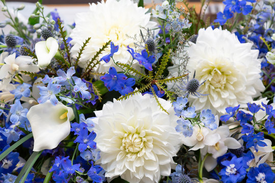 White, blue and light blue flowers