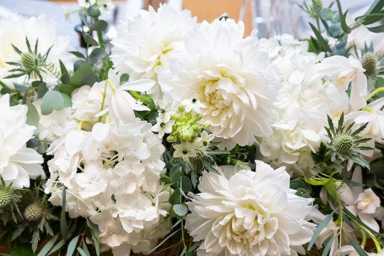 White flower and green flower