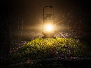Fotomurales - Dark night magic scene with night lights. Night, gloomy forest. Magic, magical experience, fabulous night. Moonlight at night. Wet asphalt, reflection.