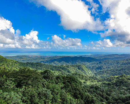 Beautiful View of El Yunque National Rainforest