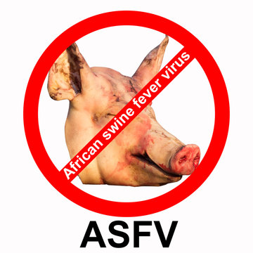 Sign of prohibition of the African swine fever virus in Asia and other areas. 3D illustration for design.