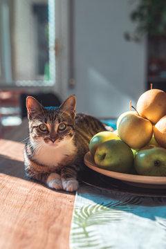 Lucy e frutta