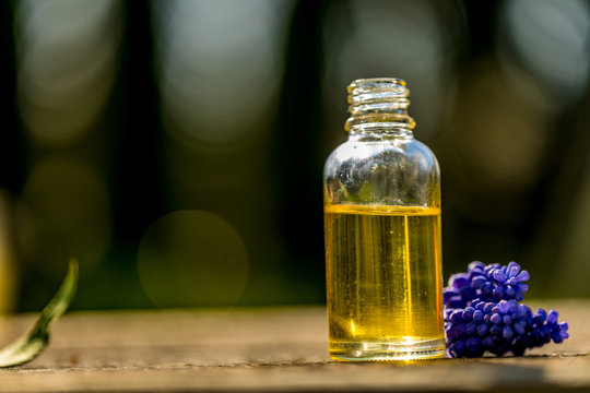 Fresh blue flowers and essential oil as natural aromatherapy for headache and migraine relief on old wooden background.