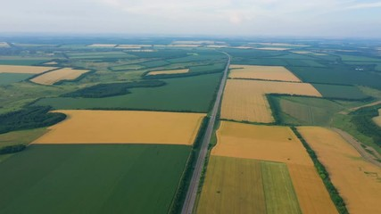 Wall Mural - aerial view of green fields