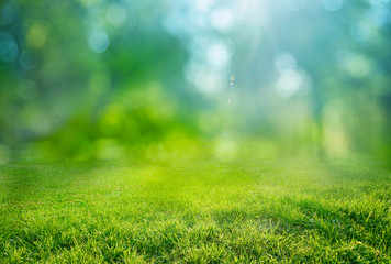 natural grass background with blurred bokeh and sun