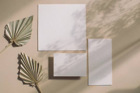 Blank invitation, menu, rsvp. Flat lay, top view. Empty white wedding stationery mock ups with soft leaves shadows on light beige background.