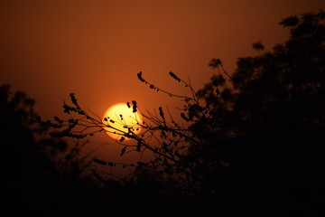 Keuken foto achterwand Rood sunset in hinterlands