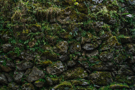Wall of rocks covered by moss