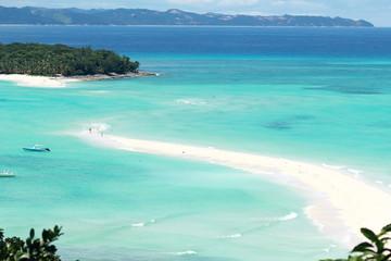 Foto auf Gartenposter Reef grun Cyan de mer